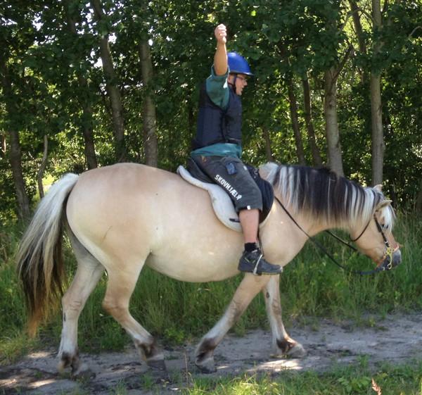 hestefold_006